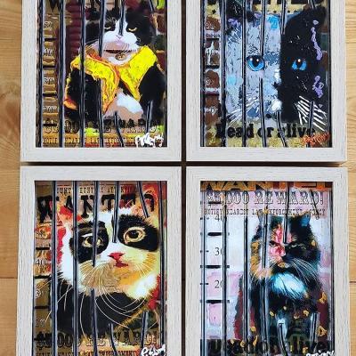 Les chats sur plexiglass 4 cadres 21x27 cm
